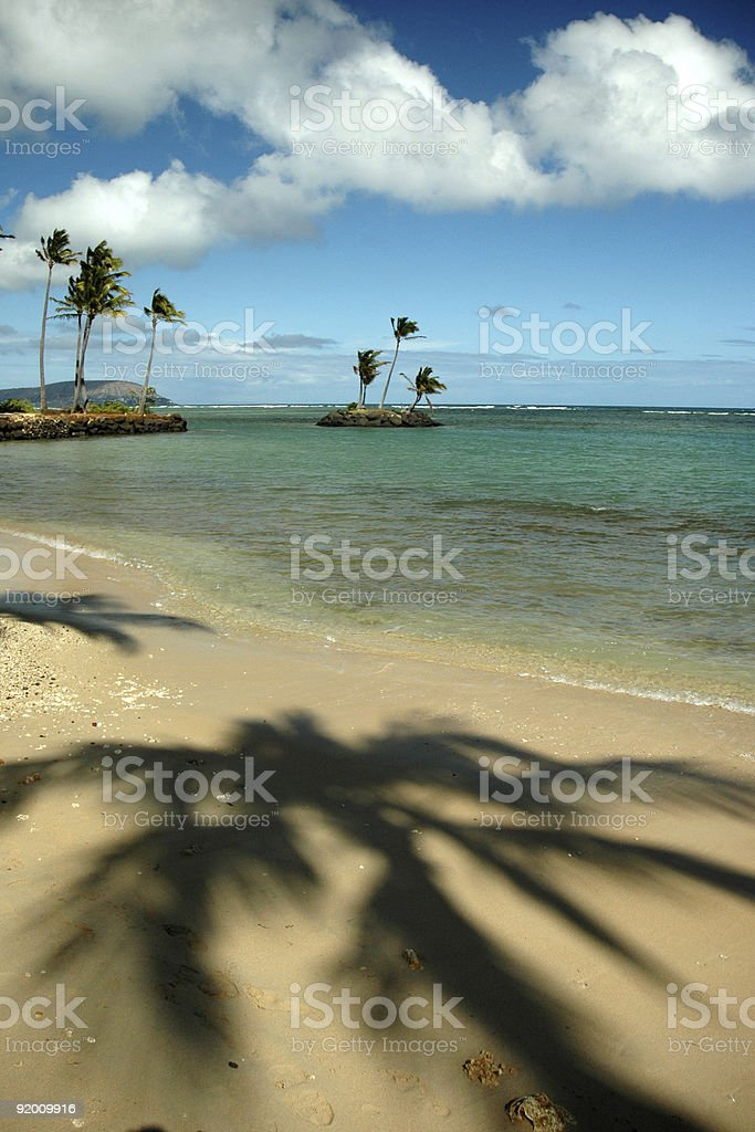 Sandy beach and palm trees on Kahala Beach, Oahu, Hawaii stock photo