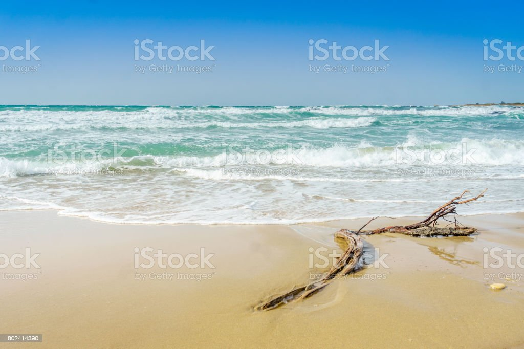 Sandy beach and wavy Adriatic sea, Italy stock photo