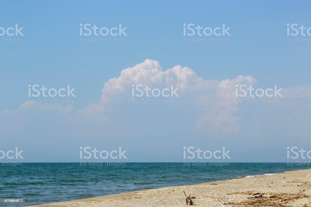 Sandstrand am Meer mit alluvialen Ablagerungen und Treibholz in der Nähe der Küste von Viareggio – Foto