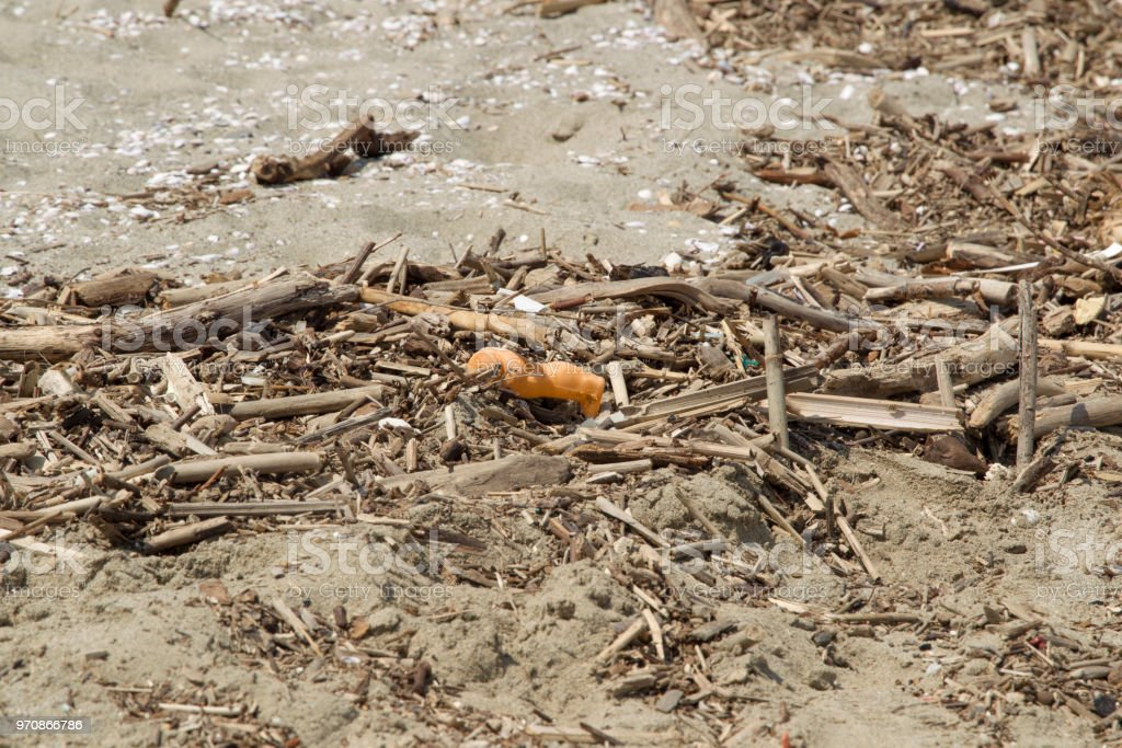 Sandy beach by the sea with the severed foot of a toy doll in the alluvial flotsam and driftwood near the coastal town of Viareggio stock photo