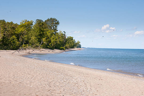 sandy beach horizontal - eriesee stock-fotos und bilder