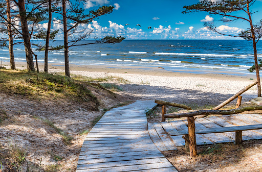 Sandy beach of the Baltic Sea, summer time