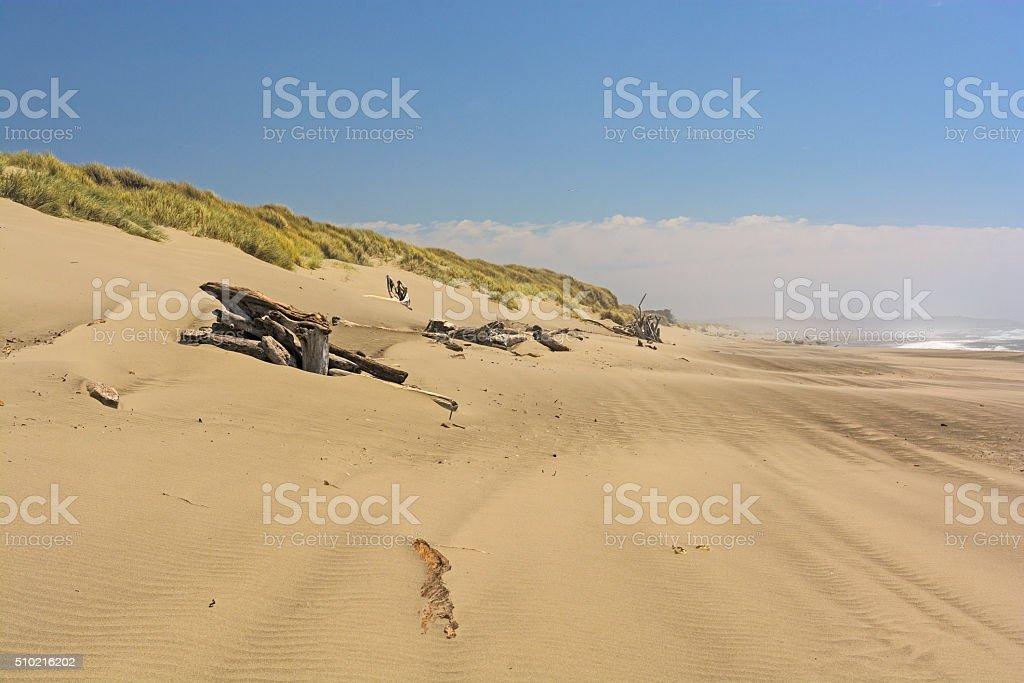 Sandy Beach on a Summer Day stock photo