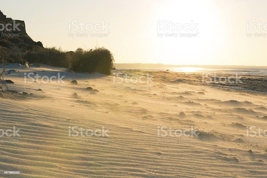 sandy beach royalty-free stock photo