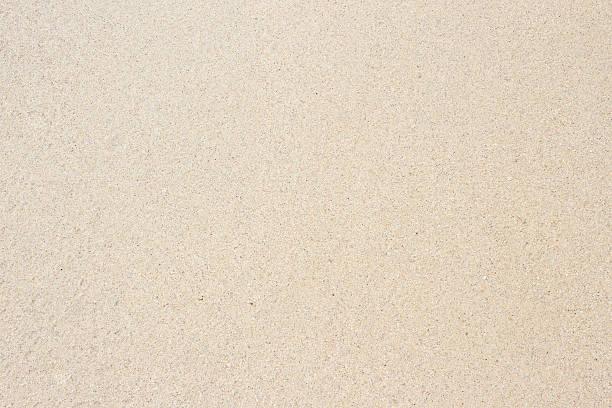 sandy beach - sand imagens e fotografias de stock