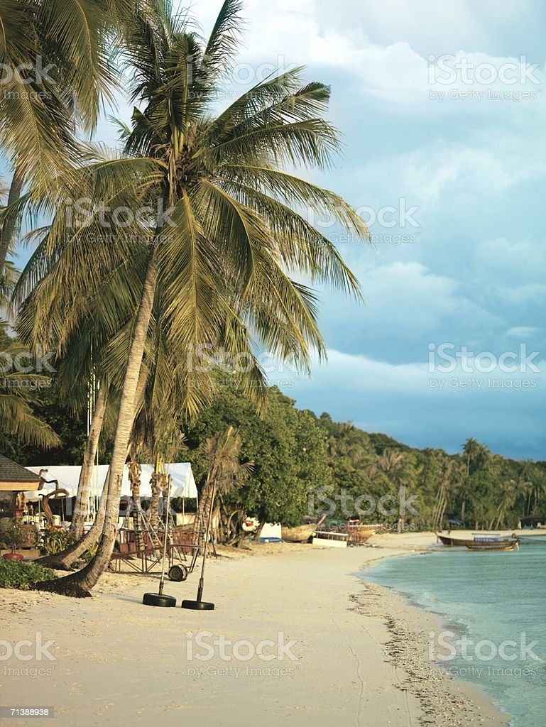 Sandy beach royalty-free stock photo