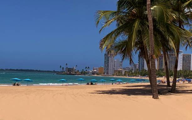 Sandy Beach, Turquoise Ocean and Palm Trees in a Resort Area stock photo