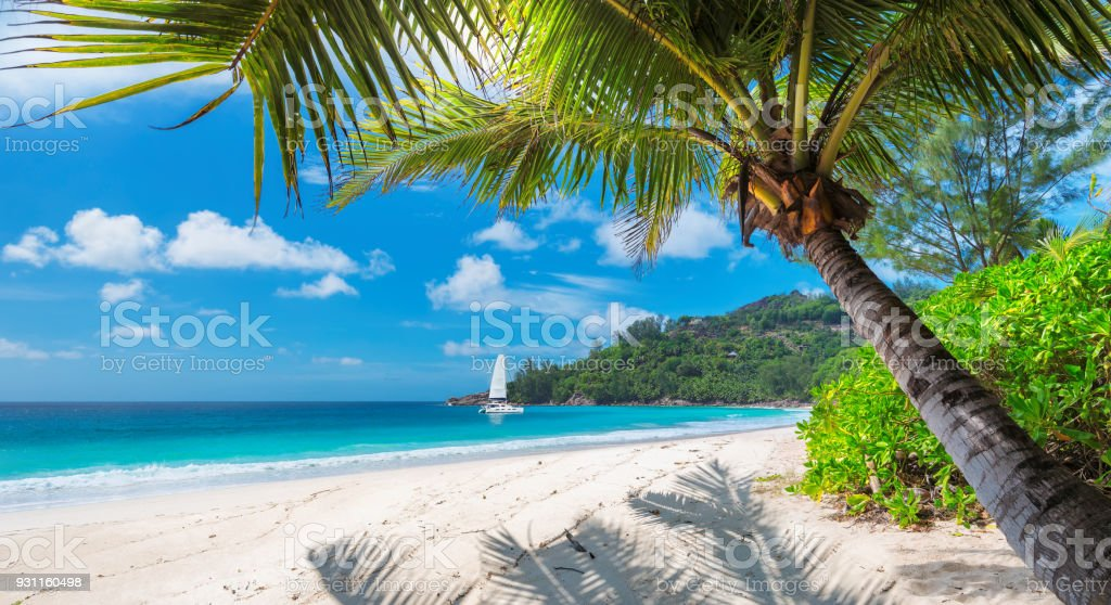 Playa de arena con palmeras y un bote de vela - foto de stock