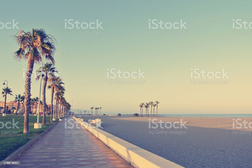 Sandy beach with palm-lined promenade at sunset stock photo