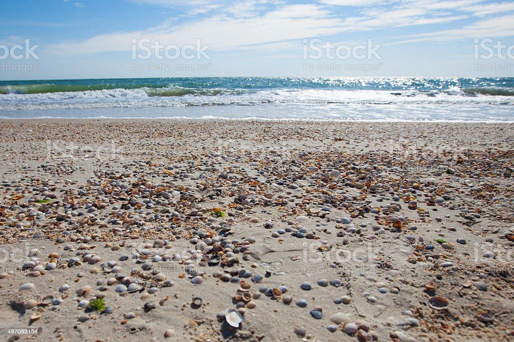 Sandy coast line in summer, Azov sea, Ukraine stock photo