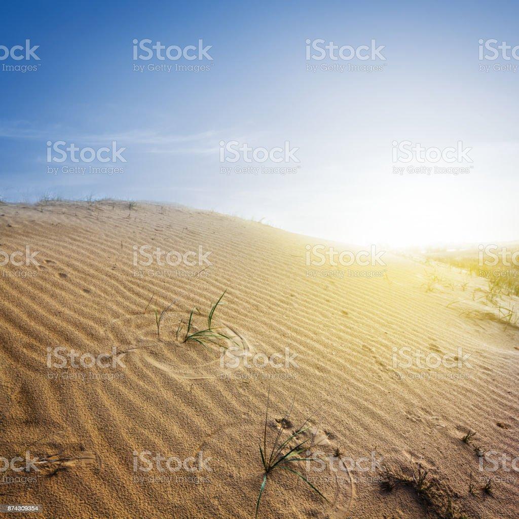sandy desert at the sunrise stock photo