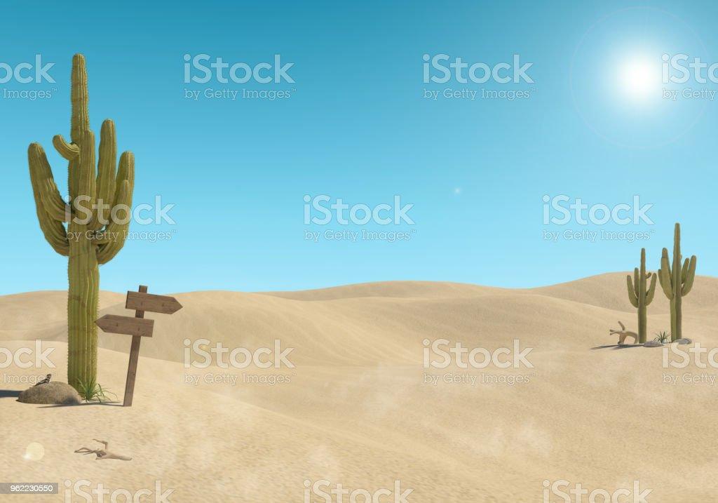 Sandy Wüstenlandschaft mit Kaktus und hölzernen Schild an blauen Himmelshintergrund – Foto