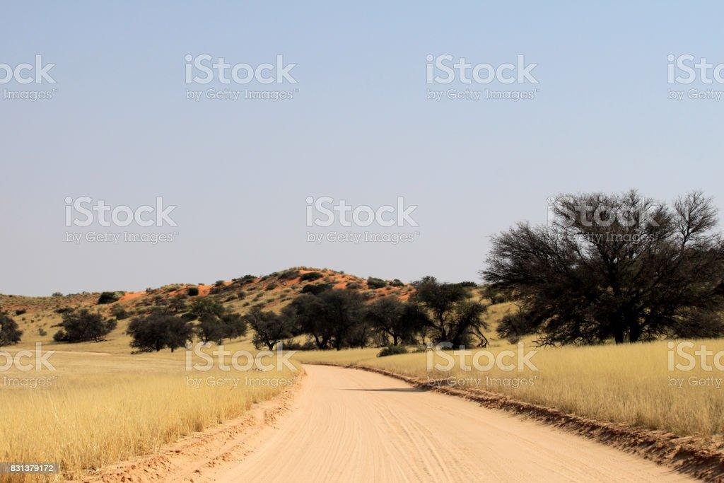 Sandy desert road stock photo
