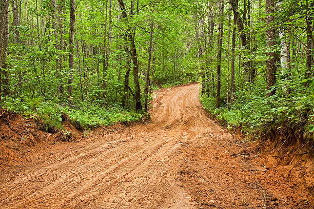 Sandy Dirt Road stock photo