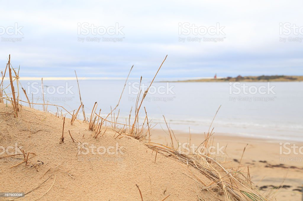 Sandy dunes and lighthouse at Tylösand, Halmstad Sweden stock photo