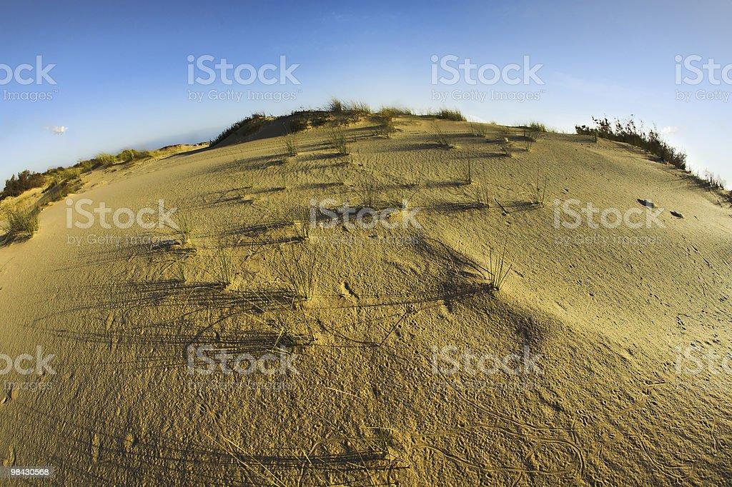 Sandy dunes at coast of Mediterranean sea royalty-free stock photo