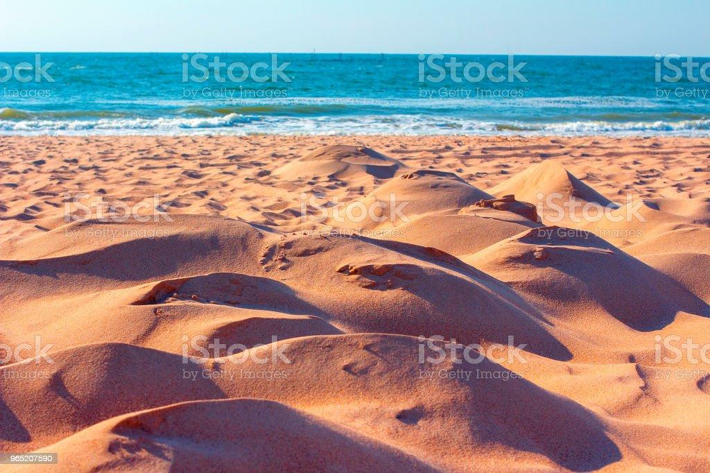 sandy dunes on the beach royalty-free stock photo