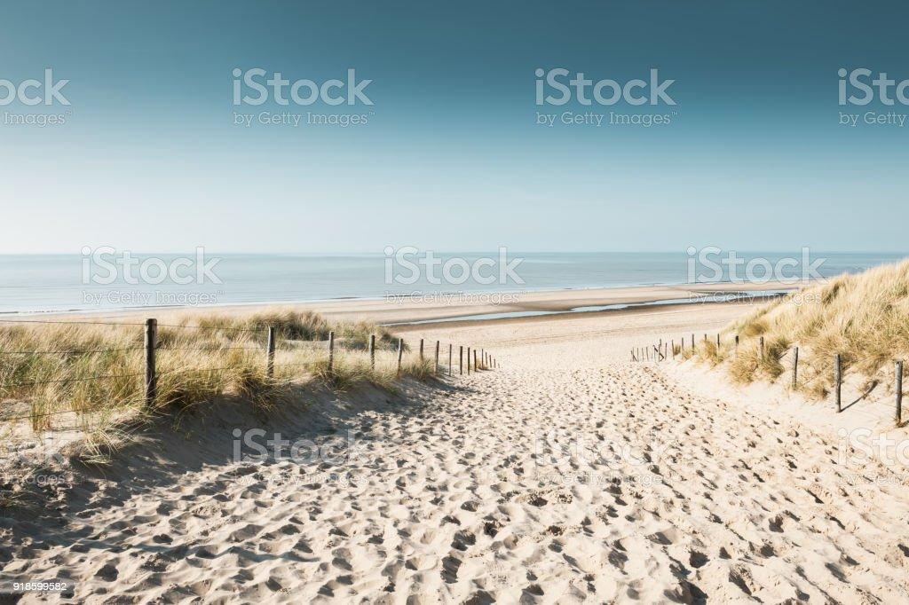 Sandy dunes on the coast of North sea stock photo