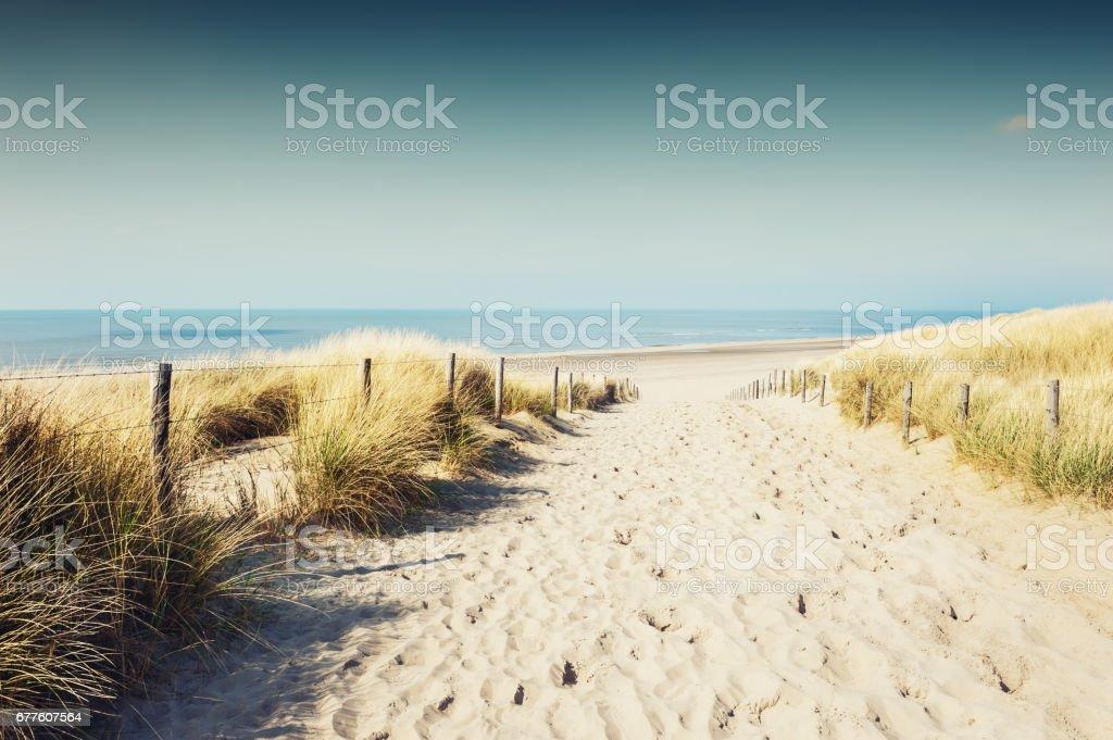 Sandy dunes on the sea coast stock photo