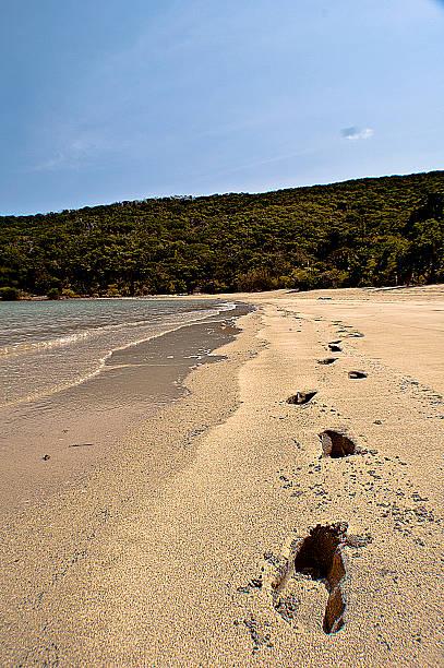 Sandy Footprints stock photo