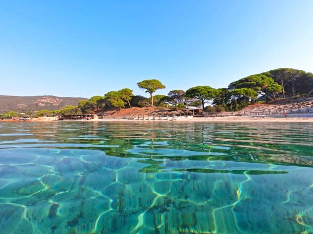 Sandy Palombaggia Strand mit kristallklarem Meer, Korsika, Frankreich – Foto