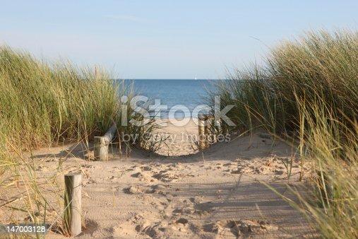 Footpath through sand dunes leading to the beach. Sandbanks beach, Poole, Dorset.