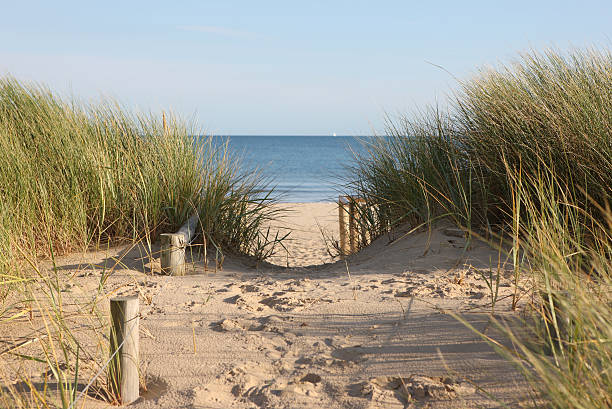 sandy pathway accessing a beach - sand dune stock photos and pictures
