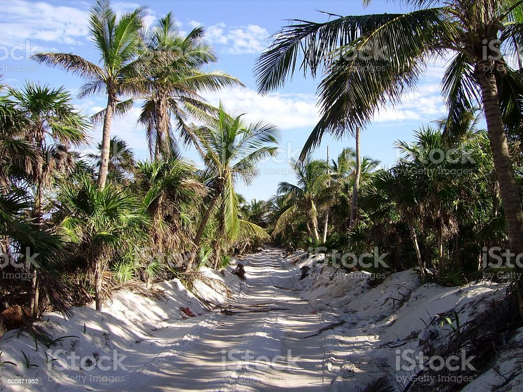 Sandy road in Sian Ka'an biosphere reserve, Mexico stock photo