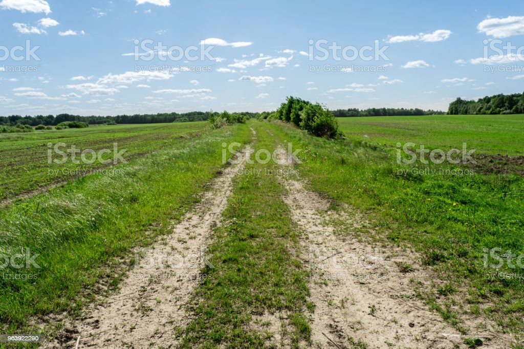 sandy rural road overgrown with grass and shrubs, nature background - Royalty-free Agricultural Field Stock Photo