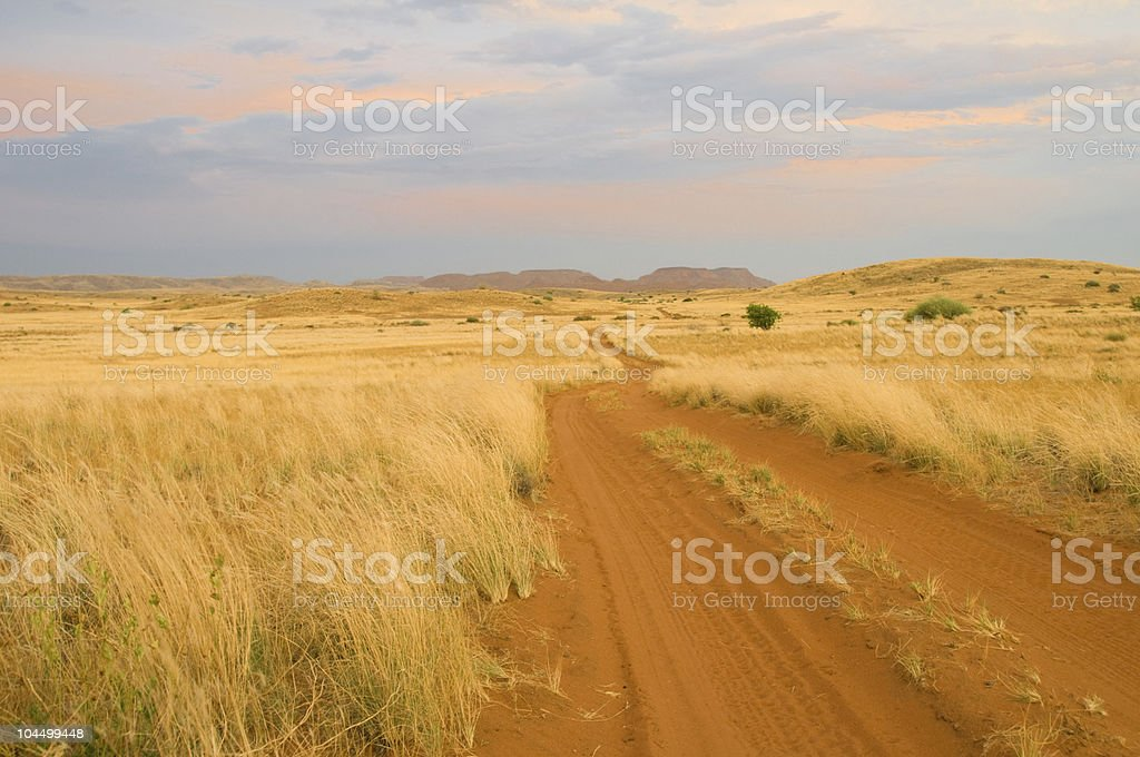 Sandy savanna road stock photo