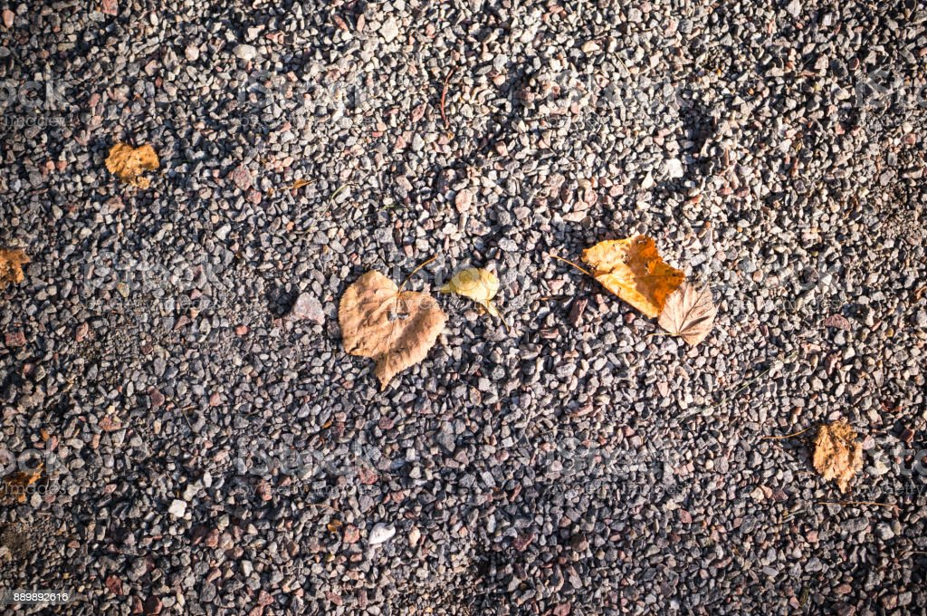 gray sandy stone ground with autumn leaves. background, texture.