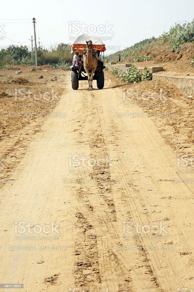 Sandy track through the desert camel cart background royalty-free stock photo
