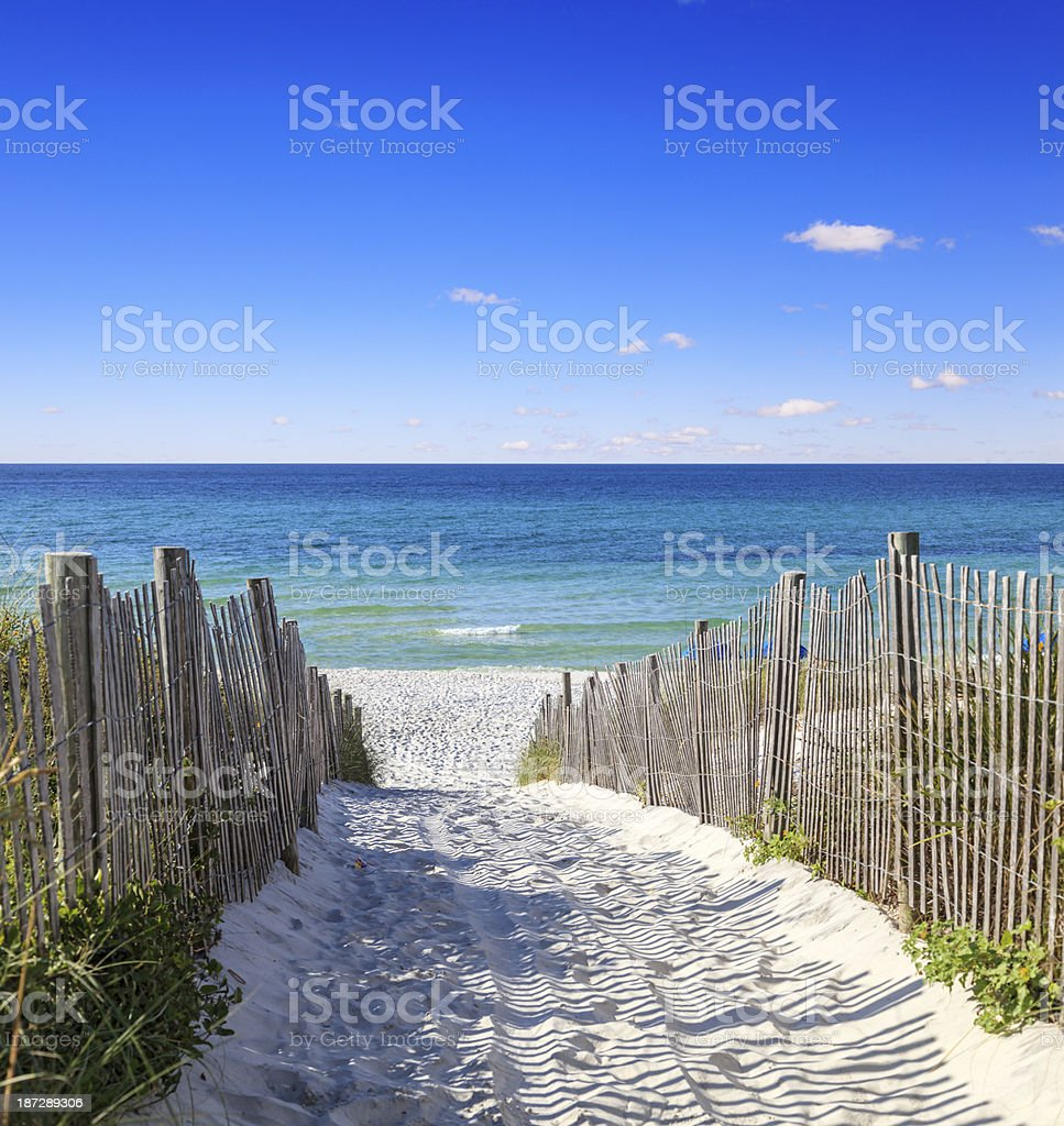 Sandy walkway leading to the beautiful Gulf Shore Beach stock photo