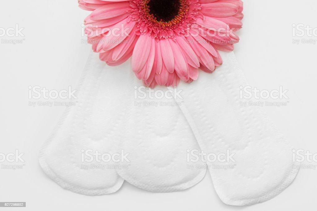 日常的衛生巾、 女性保健和舒適 - 免版稅不育圖庫照片