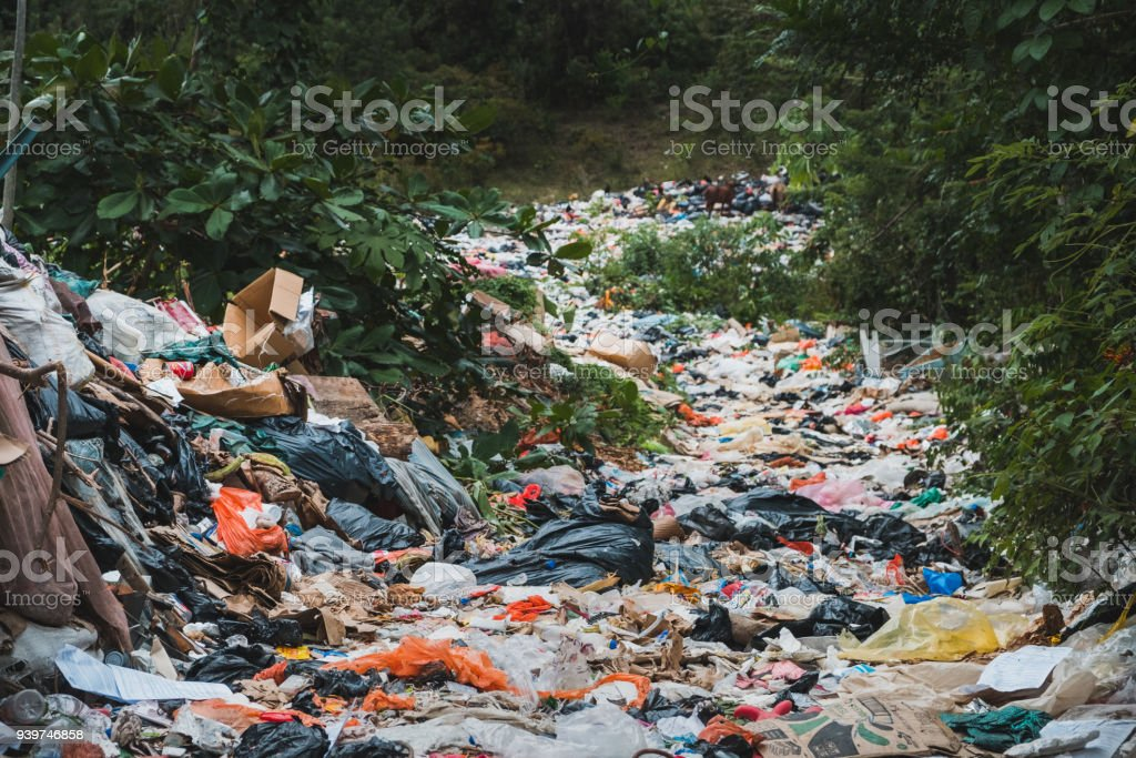 sanitary landfill inside forest - garbage dump, waste desposit - environmental pollution stock photo
