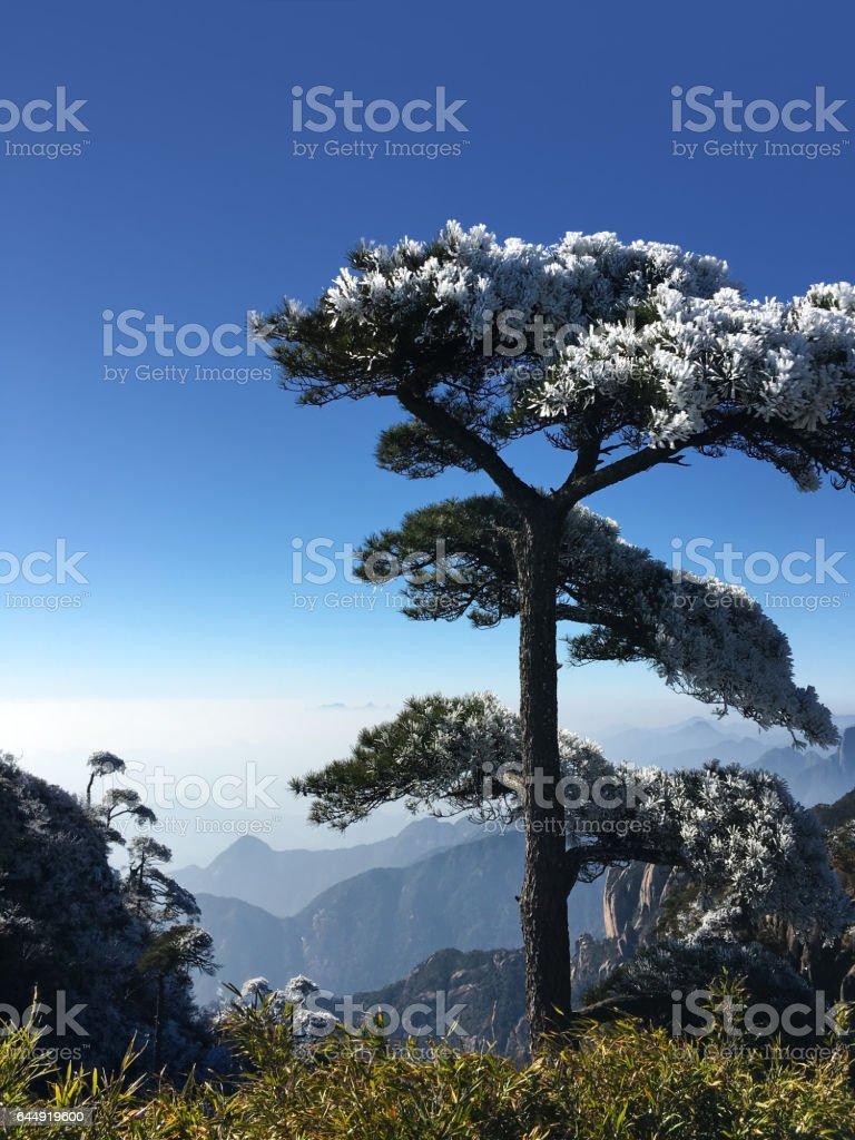 Sanqingshan scenery,Jiangxi Province,China stock photo