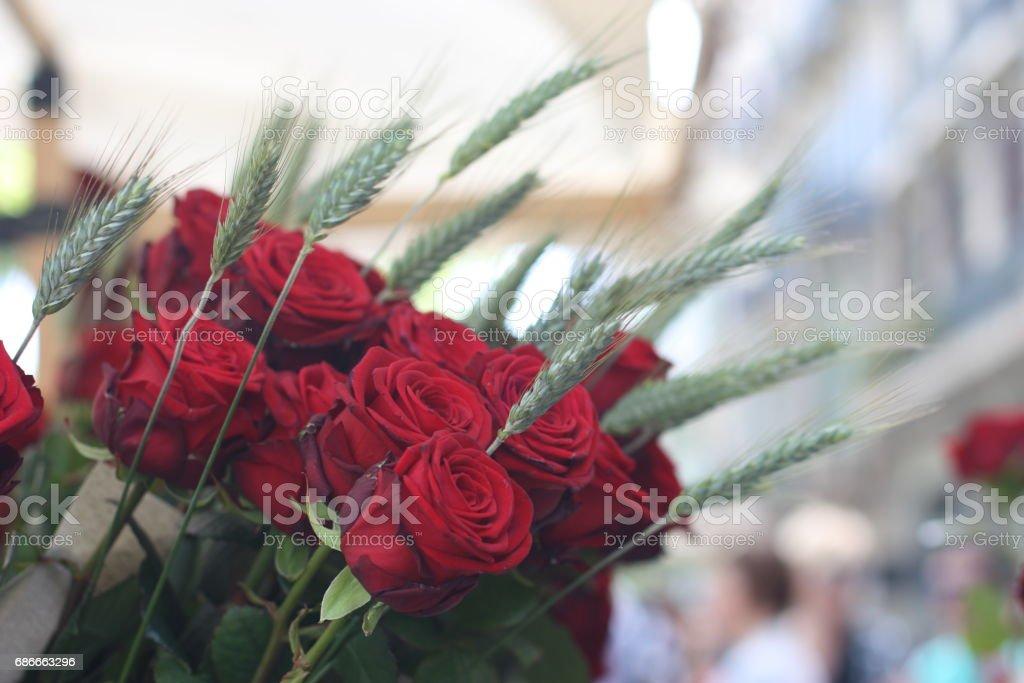 Sant Jordi in Barcelona stock photo
