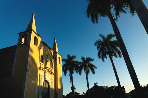 Santa Ana Church framed by palm trees during sunset light, Merida, Yucatan, Mexico stock photo