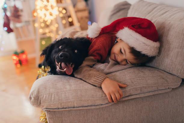 santa claus und sein haustier - kinder weihnachtsfilme stock-fotos und bilder