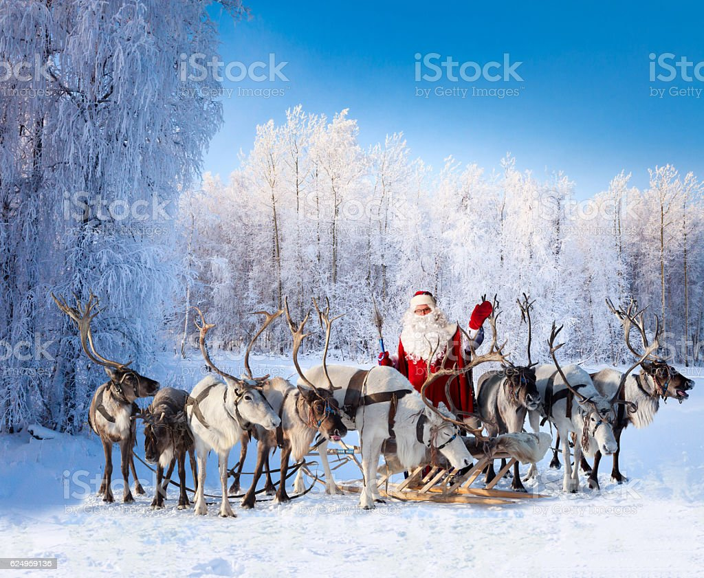 Santa Claus and his reindeer in forest - foto stock