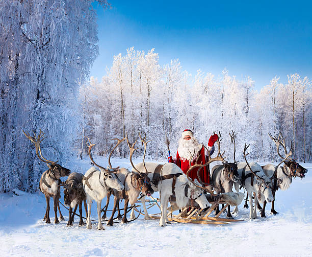 santa claus and his reindeer in forest - rentier stock-fotos und bilder