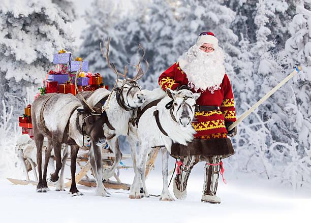 サンタクロースと彼のトナカイ - トナカイ ストックフォトと画像