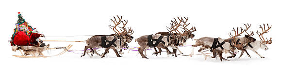 Santa Claus is sitting in a deer sleigh Santa Claus rides in a reindeer sleigh. He hastens to give gifts before Christmas. sleigh stock pictures, royalty-free photos & images