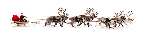 Santa Claus is sitting in a deer sleigh Santa Claus rides in a reindeer sleigh. He hastens to give gifts before Christmas. sled stock pictures, royalty-free photos & images