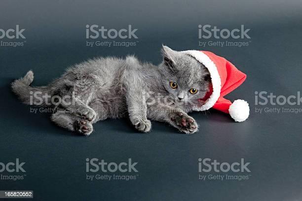 Santa claus picture id165820552?b=1&k=6&m=165820552&s=612x612&h=vrhcn ypipvdmkc9l19a 74zzewf 01rladdkd2qqig=