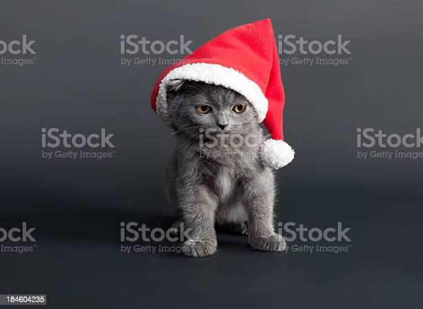 Santa claus picture id184604235?b=1&k=6&m=184604235&s=612x612&h=rksxcuepaghxw8m rg8a325avqmodzdnbuybmalzaic=