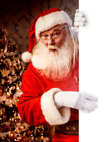 istock Santa Claus pointing on blank banner 886657500