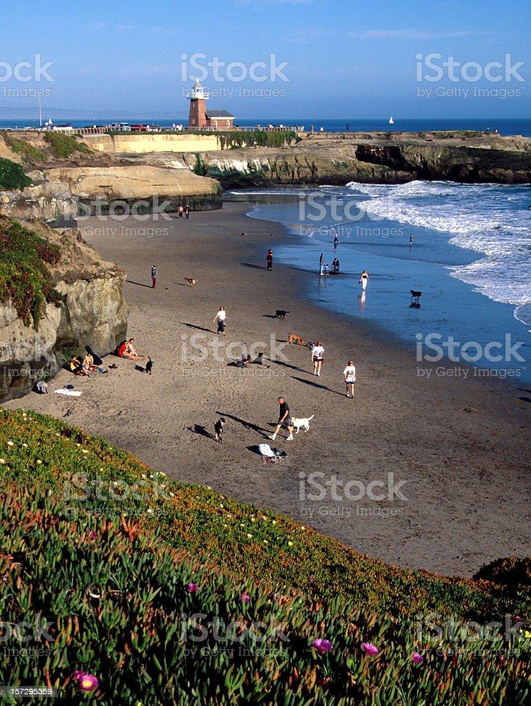 Santa Cruz Beach and Lighthouse stock photo