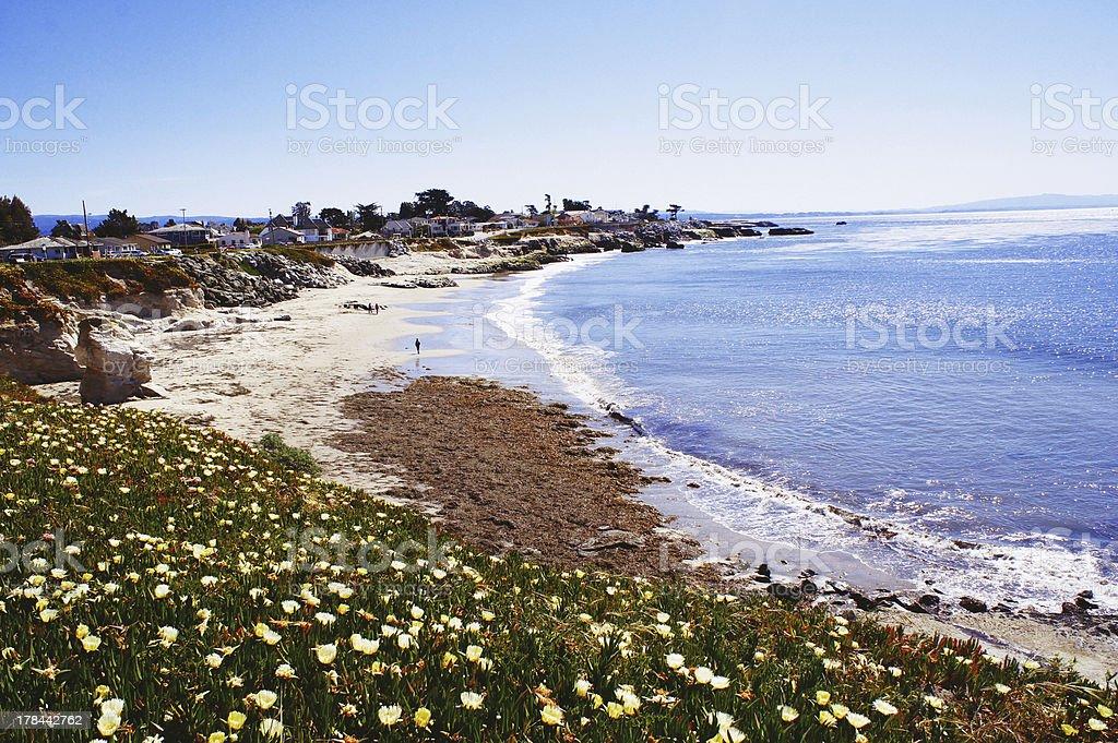 Santa Cruz Beach stock photo