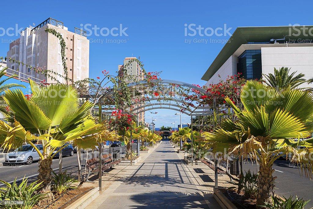 Santa Cruz de Tenerife. Canary Islands, Spain stock photo
